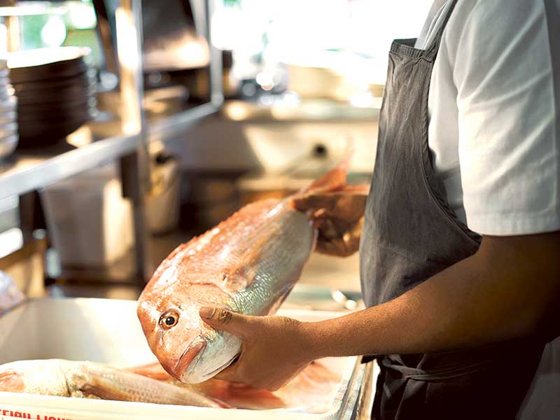 New Zealand Seafood Sustainability Awards