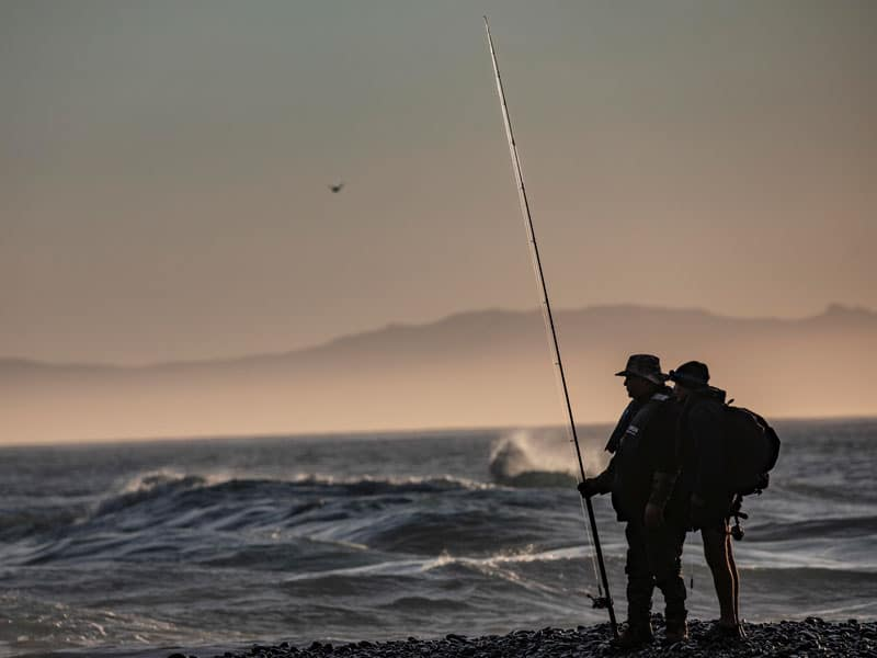 South Island salmon harvest survey 2020