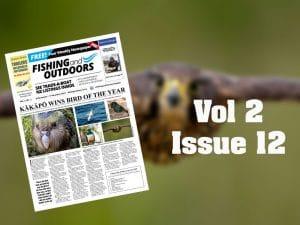 F&O-Vol2-Issue12