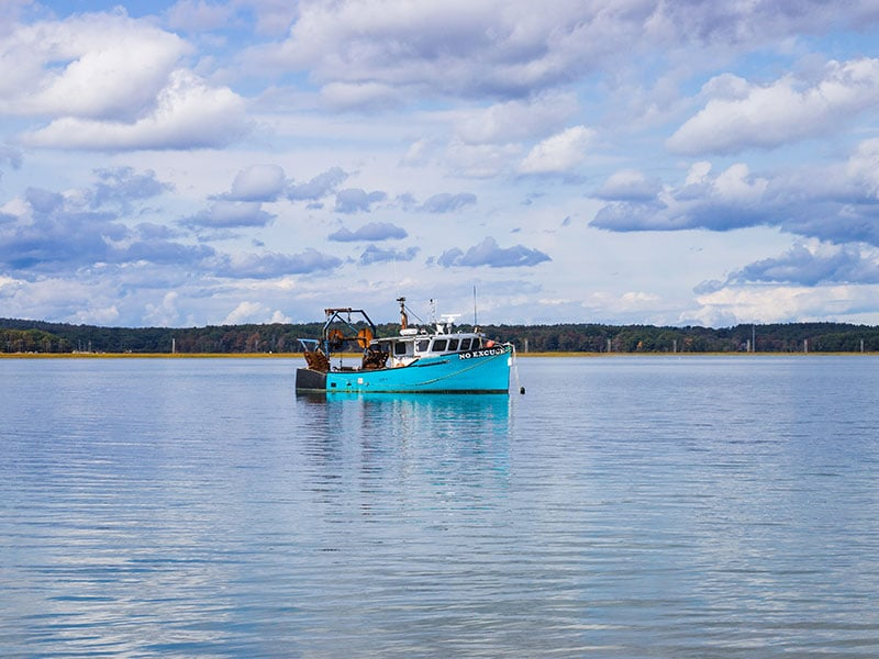 Cameras on commercial fishing vessels
