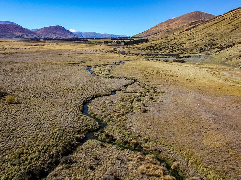 Habitat-protection-project-Rakaia-River